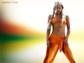 Nice wallpaper with Anna Kournikova