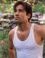 David Duchovny looks sexy