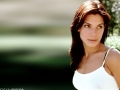 Sandra Bullock neckline wallpaper