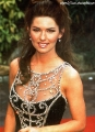 Shania Twain wearing glamorous dress
