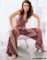 Shania Twain wearing gorgious dress with hot neckline
