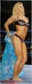 Torrie Wilson stripping on the ring