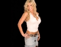 Torrie Wilson wearing hot shimmy