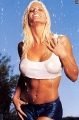 Big Boobed Torrie Wilson posing in wet hot transparent shimmy