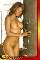Naked Traci Bingham exposing her drop dead gorgious body
