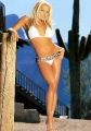 Trish Stratus posing in hot bikini